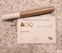 Certificados dos Cursos Online